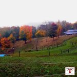 Fall 2020 Hours at Apple Hill Farm