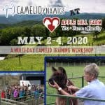 CAMELIDynamics @ Apple Hill Farm